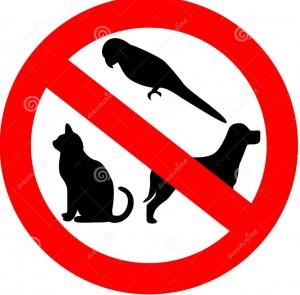 SB Rapsas – Dėl gyvūnų laikymo